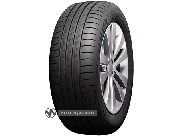 /Media/TyresIntc/Tyres/Goodyear_EfficientGrip_Performance_1.jpg